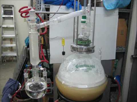 synthesis of chloroform The international programme on chemical safety (ipcs), established in 1980, is a joint venture of the united nations environment programme (unep), the international labour organization (ilo), and the.