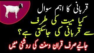 Kia Qurbani Mayyat par wajib hai|Qurbani ke masail|Qurbani kon kar sakta hai