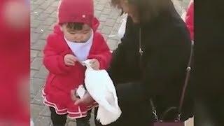 Kleines Mädchen Trickst Taube Aus Und Klaut Ihr Das Futter!