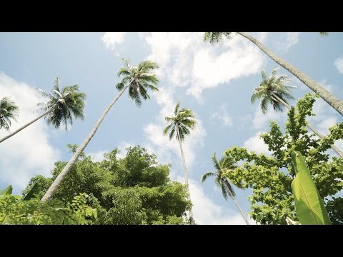 Kitava, Trobriand Islands, Papua New Guinea