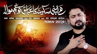 Nohay 2019 | Hai Apni Sakina Ka Abbas Ko Ghum | Syed Raza Abbas Zaidi | Mola Abbas New Noha 2019