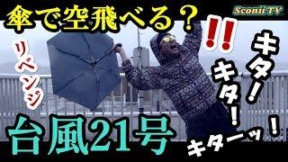 現在台風21号が襲撃中。 前回台風の風に乗って 空を飛ぶというメルヘン...