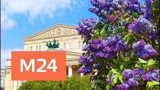 Смотреть видео Когда в Москву придет ясная погода - Москва 24 онлайн