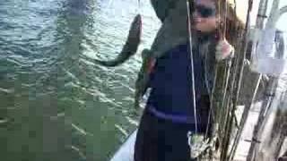 Ловити рибу на ВЗ мосту