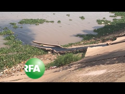 Cambodian River Flowing With Sewage | Radio Free Asia (RFA)