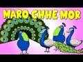 Download મારો છે મોર - Maro Chhe Mor -My Peacock Gujarati Rhyme for Children | Gujarati Balgeet Nursery Songs MP3 song and Music Video
