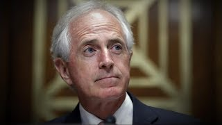 Sen. Bob Corker: 'It's a shame the White House has become an adult day care center' The senior senator is just the latest member of the Republican party at odds with Trump.