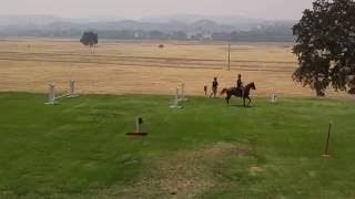 Fort Hunter Liggett - 75th Anniversary - The 11th Armored Cavalry Regiment Horse Unit
