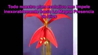 "Mensaje de ""Lady Rowena"" - Metafisica Ley de Atraccion Secreto Alma Yoga Zen Saint Germain HD Video"