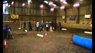 Crafty Canine Training Club, Carmarthen