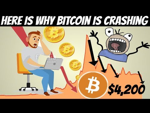 Bitcoin Crashes Under $5,000 | Here Is The Real Reason Why (Price Crash Reveled)