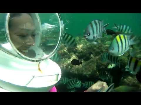 Bali Travel - Sea Walker