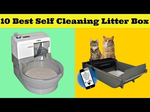 Top 10 Best Automatic Self-Cleaning Litter Boxes 2019 Reviews