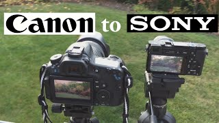Why I Switched to the Sony A6000