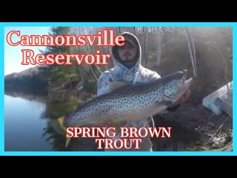 Fishing For Brown Trout On The Cannonsville Reservoir Using Lipless Crankbaits, Spoons And Minnows