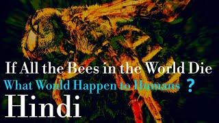 क्या होगा अगर दुनिया की सारी मधुमक्खियाँ मर जाएँ |What Would Happen in a World Without Bees