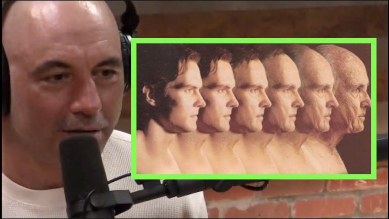 The Final Frontier Of Anti Aging Joe Rogan David Sinclair Youtube