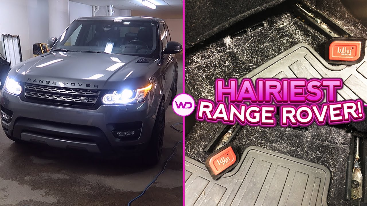 Deep Cleaning a Girl's HAIRY Range Rover | EXTREME Dog Hair Removal | Very Satisfying Car Detailing