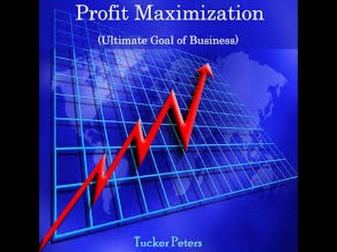 sales maximisation