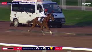 Vidéo de la course PMU PRIX DE TOURVES