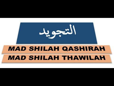 kaidah-tajwid-||-mad-shilah-qashirah-||-mad-shilah-thawilah-||-fellyanz-febby