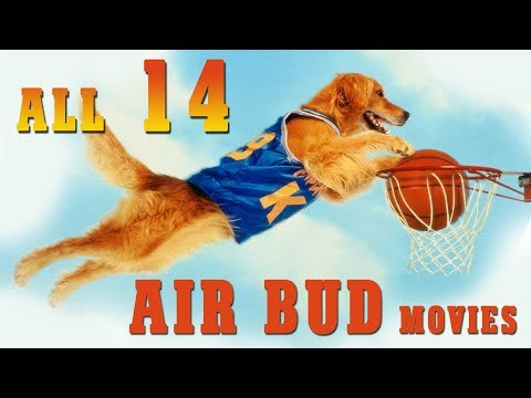 AIR BUD: All 14 Movies