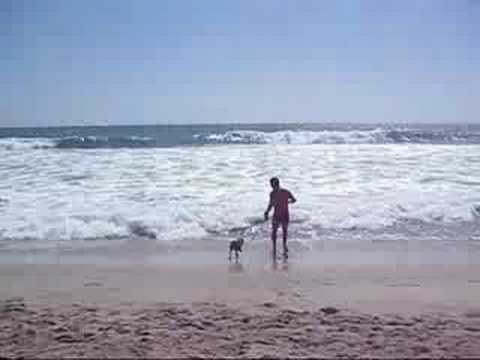 Roughing it at the Newport Dunes from YouTube · Duration:  3 minutes 46 seconds