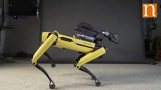 Boston Dynamics' robo dog has some must-see dance moves