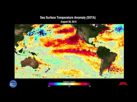 2015-2016 El Niño-Southern Oscillation (ENSO) Sea Surface Temperature Anomalies (SSTA)