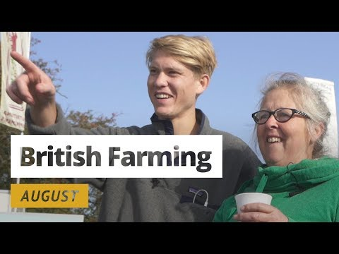 British Farming | 12 Months On A UK Farm: August