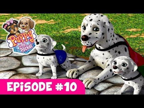 Puppy In My Pocket - Webisode #10