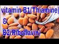 vitamin B1(Thiamine) & B2(Riboflavin)