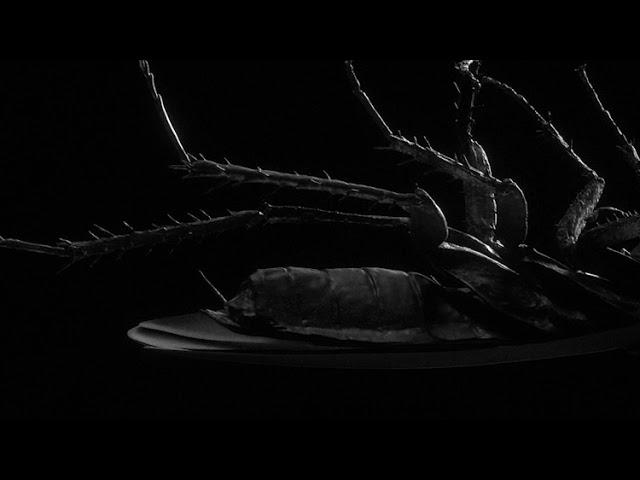 Kayzo x Sullivan King x Papa Roach - DOMINATION (Official Audio)