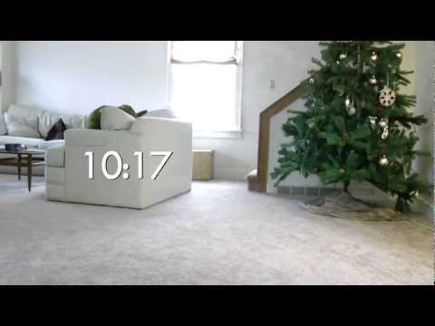 Our cat, our Christmas tree, & time-lapse