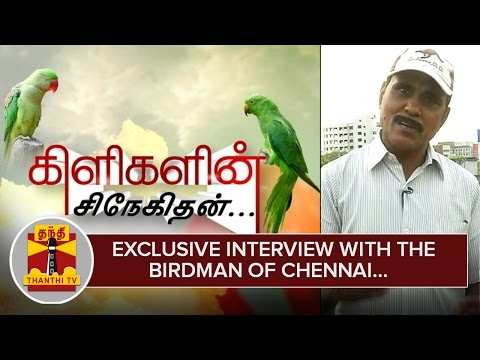 Exclusive Interview with the Birdman of Chennai who feeds Thousands of Parrots Everyday – Thanthi TV