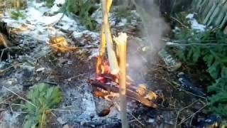 Дикие условия -  Ночёвка в лесу / BUSHCRAFT .