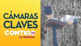 DESAPARECIERON cámaras de seguridad y caseta cercanas a casa de Tomás Bravo - Contigo en la Mañana