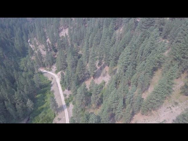 Yellow Pine Landing Strip