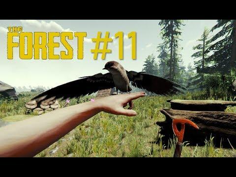 Прохождение The Forest №11. ОХОТА НА ЕНОТА. Пытаемся найти енотов на острове.