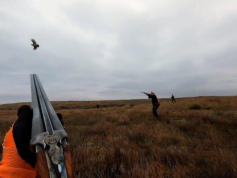 My Favorite 12 Covey Flushes - Oklahoma Quail Hunting