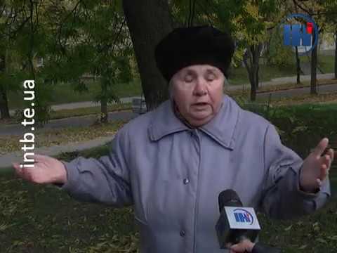 Телеканал ІНТБ: Тернополянка зробила з квартири притулок для тварин