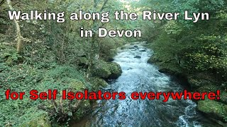 Virtual walk along the beautiful River Lyn in Devon #stayathome #withme