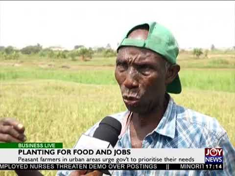 Planting for Food and Jobs - Business Live on JoyNews (7-2-18)