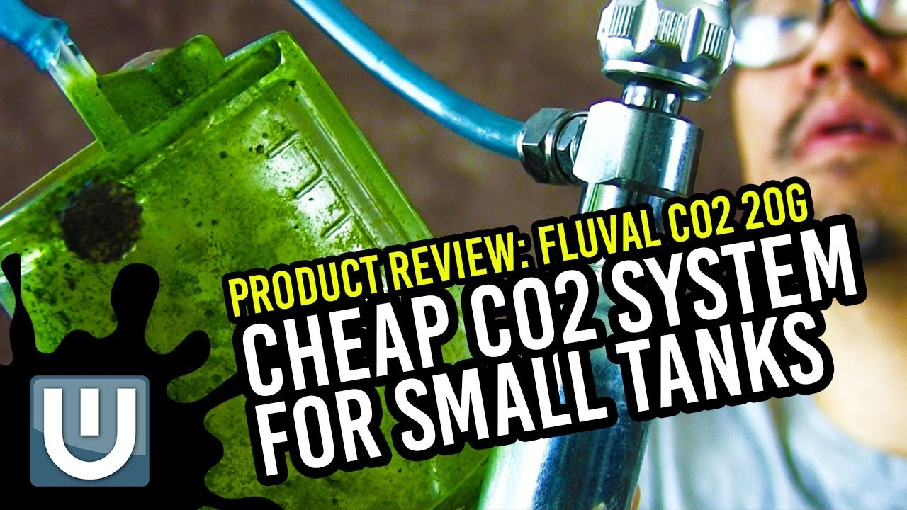 fluval co2 20g reviews cheap co2 for small tanks youtube