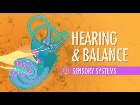 Hearing & Balance: Crash Course A&P #17