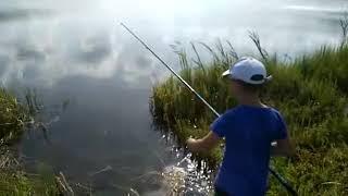 Моя летняя рыбалка