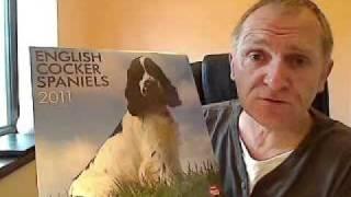 English Cocker Spaniels Calendar 2011
