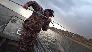 Рыбалка Цаган Аман База Экопорт Часть 5 Утренний сом
