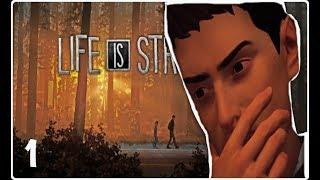 THE LAST GOODBYE | LIfe is Strange 2 | Episode 1: ROADS part 1