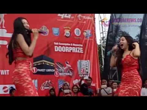 Bagian Dada Duo Srigala Menyembul di HUT Telkomsel, Ternate